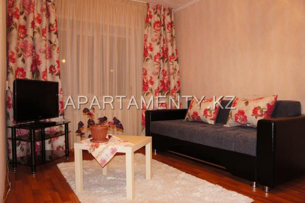 1-bedroom apartment in the center
