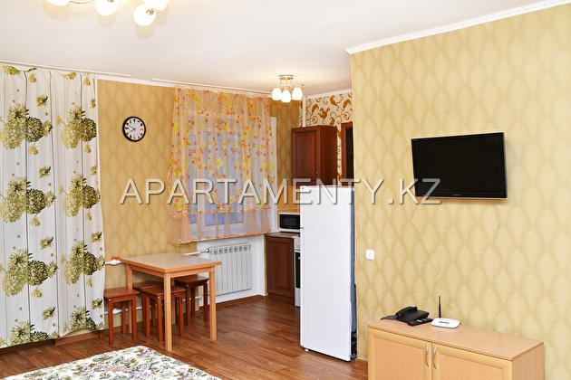 Studio apartment daily