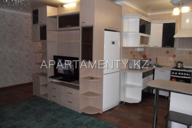 Studio apartment in the center daily