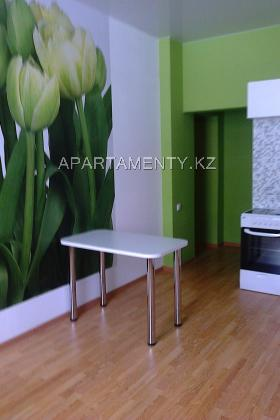One room apartment for daily rent, district