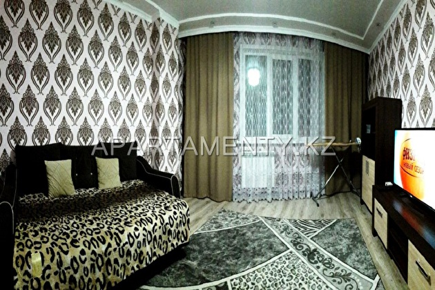 1 bedroom apartment in the city center