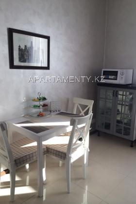 One bedroom apartment in the city center