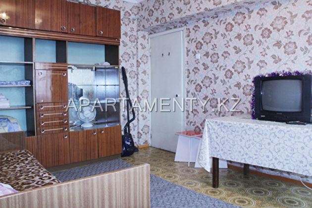 one-bedroom apartment in Almaty