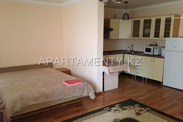1-roomed apartment by the day, st. Kubrina 22 /1
