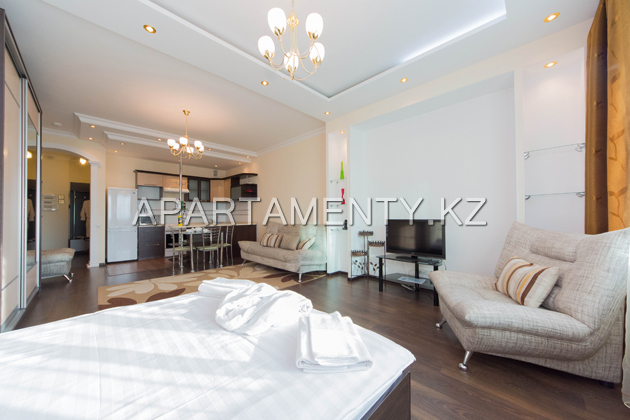 1room apartment vip daily rent Astana