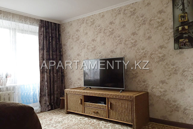 one bedroom apartment center n. Borovoe