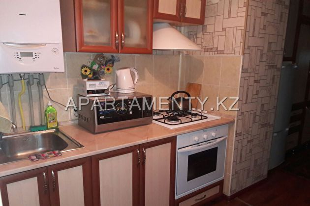 Apartment for daily rent in the center of the city