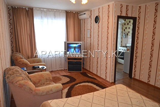 One room apartment Berezka