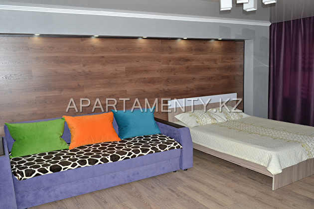 One room apartment, Hi-Tech, in the city center