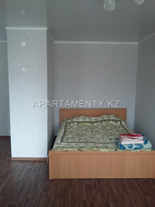 One room apartment by the day