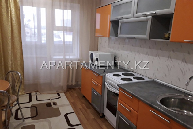 1-bedroom spacious apartment