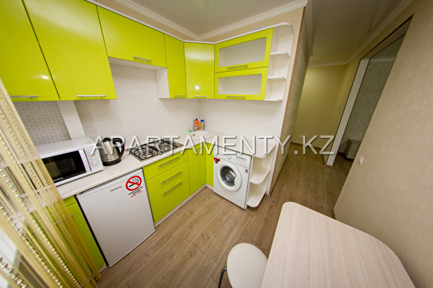 1-roomed apartment by the day