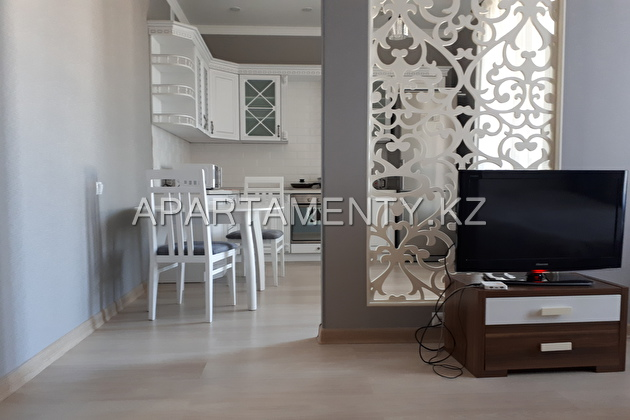 1-roomed apartment by the day in Astana