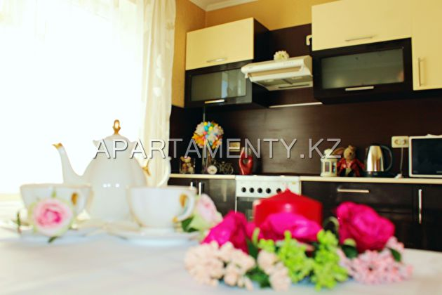 1-roomed apartment by the day in Kazan, center