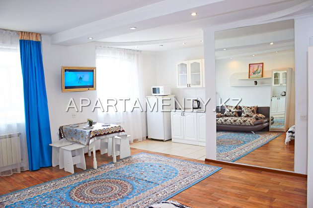 1-room apartment for daily rent, ul. Krivenko 81
