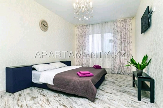1-room apartment in the city center
