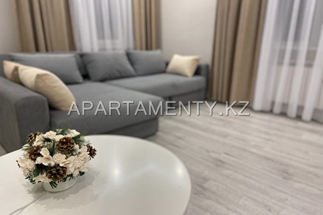 2-room apartment for daily rent, 12 mkr.