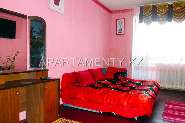 1-room apartment daily