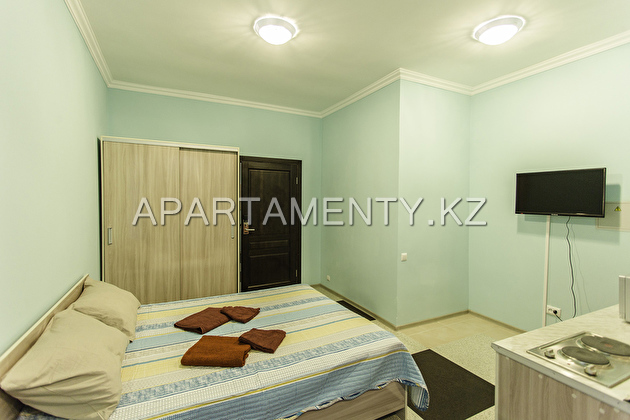 Luxury apartments 1