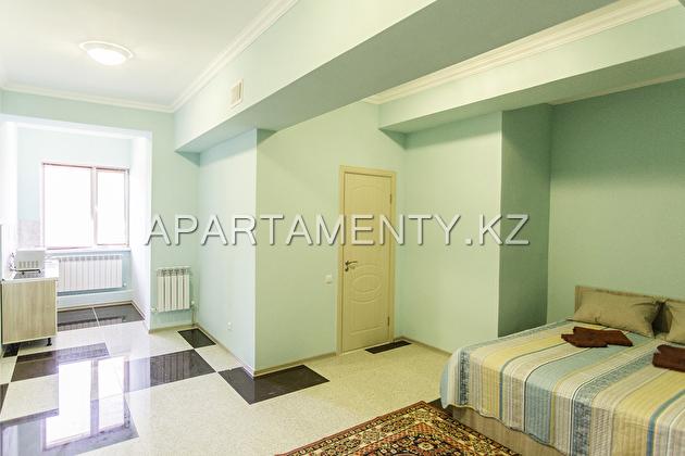 Люкс апартаменты посуточно с двухместной кроватью Queen size №5