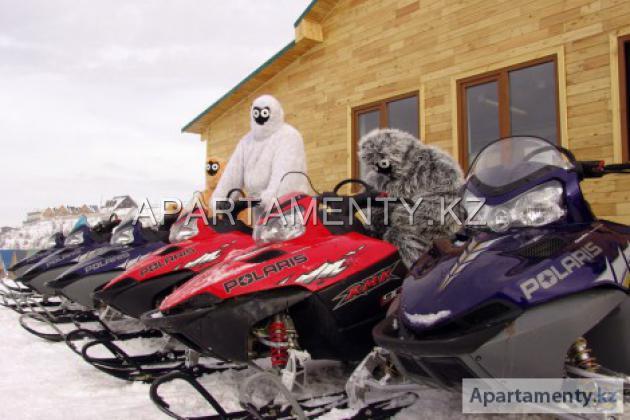 Катание на горных лыжах, сноубордах, снегоходах