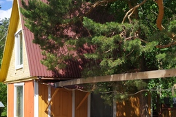 "Family Fun Center ""Sunflowers fault"" Shuchinsk - Burabay resort zone"