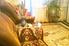 комната посуточно Боровое